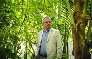 Zöldfolyosók a Füvészkertig