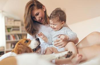 Társállatok hatása az anyaságra