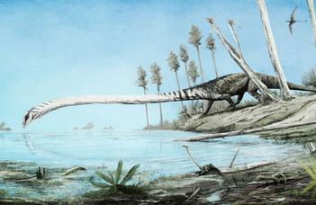 Horgászbot nyakú lény maradványait fedeztük fel Villányban