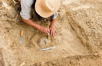 Magyar-amerikai-osztrák együttműködés az ősi maradványok megőrzéséért