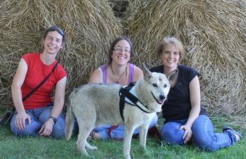 A kutyamatuzsálemek különleges génjei