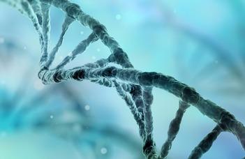 Biomolekulák és szerkezeti biológia
