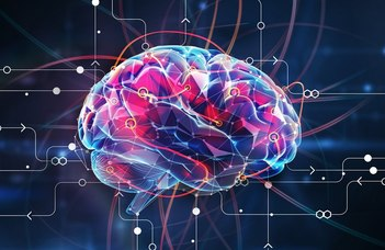Bizonyítékot találtunk arra, mi befolyásolja az intelligenciát
