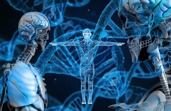 DNS-vizsgálaton alapuló családfakutatás
