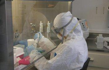 A hazai COVID-járványt meghatározó vírusváltozatok genetikai vizsgálata