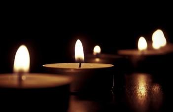 Elhunyt Bökönyi Gyöngyi vegyészmérnök