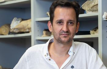 Rengeteg dinoszaurusz rejtőzhet a Bakonyban