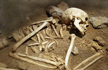 A négyezer éves hamvasztott csontok tragikus sorsról árulkodnak
